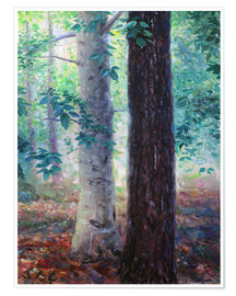 Premium poster  Elm and pine - Jonathan Guy-Gladding