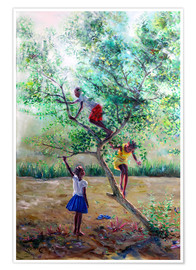 Premium poster  Guava tree III - Jonathan Guy-Gladding