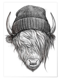 Premium poster Bull in a hat