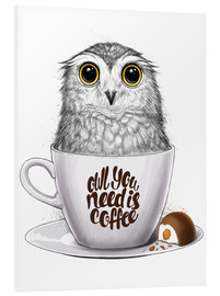 Foam board print  Owl you need is coffee - Nikita Korenkov