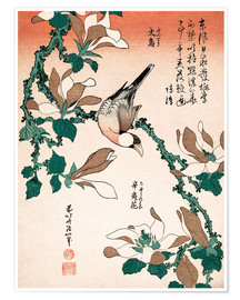 Premium poster java sparrow on magnolia