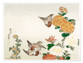 Premium poster Sparrows and Chrysanthemums