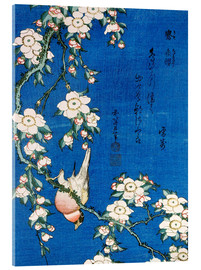 Acrylic print  Bullfinch and weeping cherry - Katsushika Hokusai