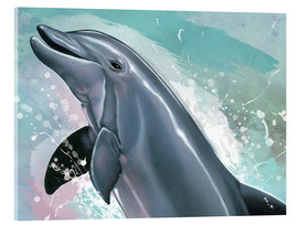 Acrylic print  Bottlenose Dolphin - Ashley Verkamp