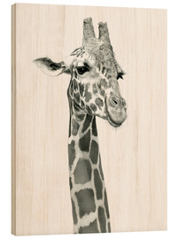 Wood print  Sketch Of A Smiling Giraffe - Ashley Verkamp