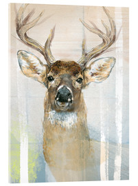 Acrylic glass  Whitetailed Deer Surrounded By Birches - Ashley Verkamp