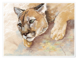 Premium poster Captived Mountain Lion