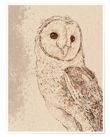 Premium poster  Endearing Barn Owl - Ashley Verkamp