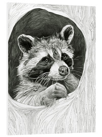 Foam board print  Raccoon In A Hollow Tree Sketch - Ashley Verkamp
