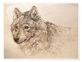 Premium poster The Gray Wolf