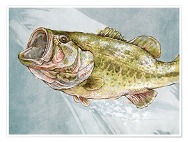 Premium poster  Magnificent Largemouth Bass - Ashley Verkamp