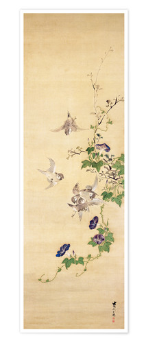 Premium poster Sparrows and morning glory
