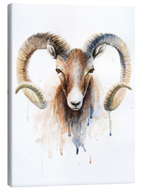 Canvas print  Aries - Nadine Conrad