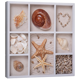 Canvas print  Mussels in a set box - Elena Schweitzer