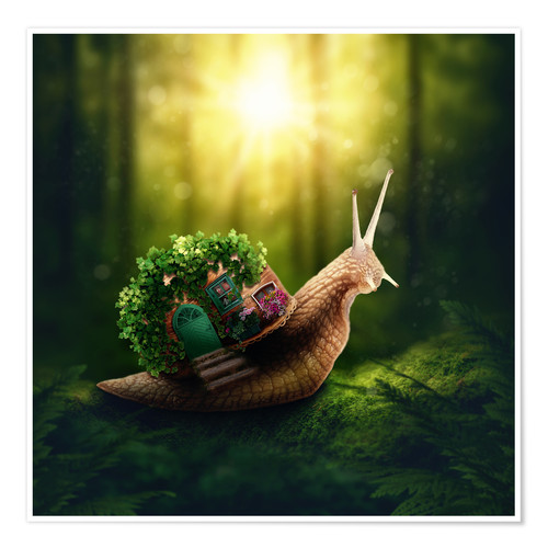 Premium poster Snail in the magic forest