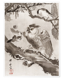 Premium poster  Owl Mocked by Small Birds - Kawanabe Kyosai