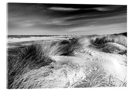 Acrylic glass  Baltic sea dunes (monochrome) - Sascha Kilmer