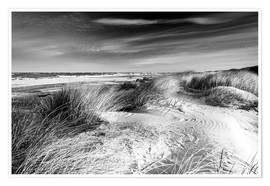 Premium poster Baltic sea dunes (monochrome)