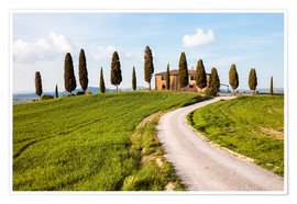 Premium poster Farmhouse with cypresses in Tuscany