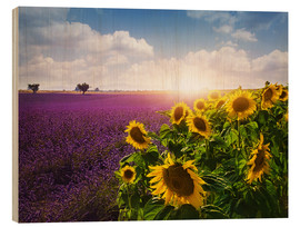 Wood print  Lavender and sunflowers fields , Provence - Elena Schweitzer