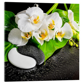Acrylic print  Spa arrangement with white orchid