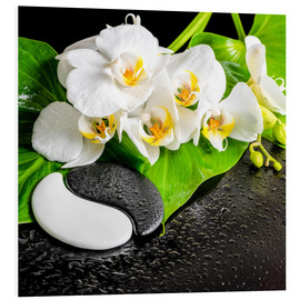 Foam board print  Spa arrangement with white orchid