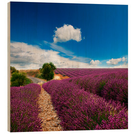 Wood print  Beautiful lavender field
