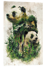 Acrylic print  The Giant Panda - Barrett Biggers
