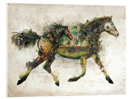 Acrylic glass  Surreal Horse Landscape - Barrett Biggers