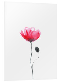 Foam board print  Poppy - RNDMS