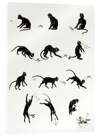 Acrylic print  The cat and the frog - Théophile-Alexandre Steinlen
