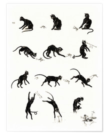 Premium poster  The cat and the frog - Théophile-Alexandre Steinlen