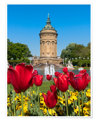 Premium poster Mannheim water tower in spring
