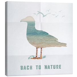 Canvas print  Back to nature - seagull - Sybille Sterk