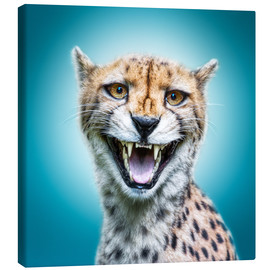 Manuela Kulpa - Funny Wild Faces Cheetah