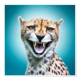 Premium poster Funny Wild Faces Cheetah