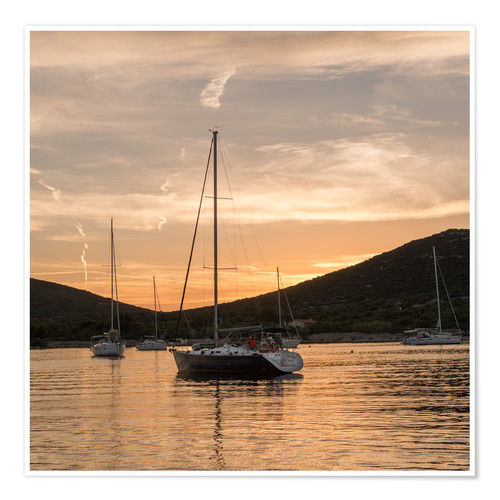 Premium poster Sailing boats in the Evening Light
