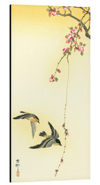 Aluminium print  Starlings and Cherry Tree - Ohara Koson