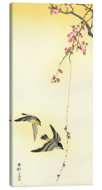 Canvas  Starlings and Cherry Tree - Ohara Koson