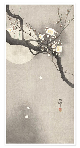 Premium poster Plum Blossoms at Night