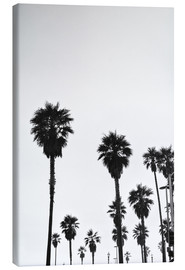 Canvas print  Boulevard under the palm trees - Finlay and Noa