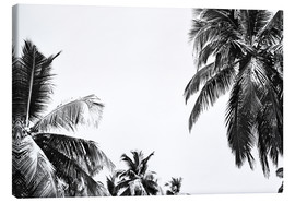 Canvas print  Under palm trees - Finlay and Noa