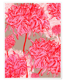 Premium poster Pretty in pink chrysanthemum