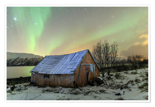 Premium poster Aurora Borealis on typical Rorbu, Svensby, Norway