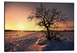 Aluminium print  Sunset in winter - Dennis Fischer