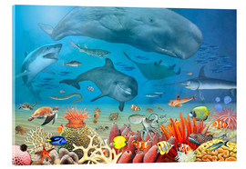 Acrylic print  Animals in the sea - Marion Krätschmer