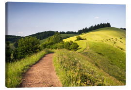 Canvas print  Summer landscape in the Kaiserstuhl - Dennis Fischer