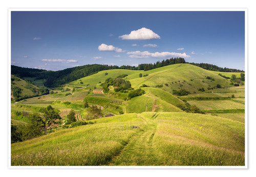 Premium poster Hills and clouds in summer, Kaiserstuhl, Germany