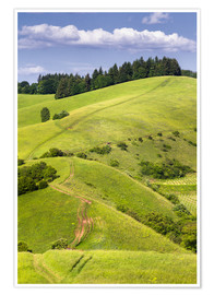 Premium poster Hill landscape in summer, Kaiserstuhl, Germany
