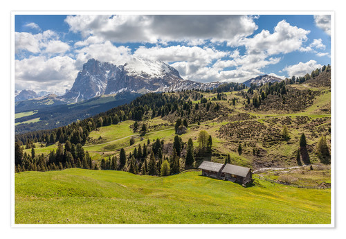 Premium poster Summer on the Alpe di Siusi (South Tyrol, Italy)
